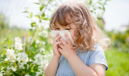Allergie Pollen Bebe