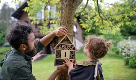 Comment fabriquer un hôtel à insectes