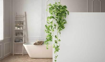 Une salle de bain élégante et blanche au design minimaliste