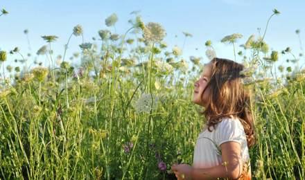 Une jeune fille semble avoir besoin de remèdes contre le rhume des foins comme elle est debout par une journée ensoleillée dans un champ plein de hautes fleurs sauvages