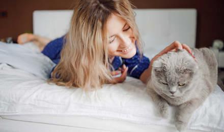 Nainen makaa sängyllä ja silittää kissaansa allergiaoireista kärsimättä