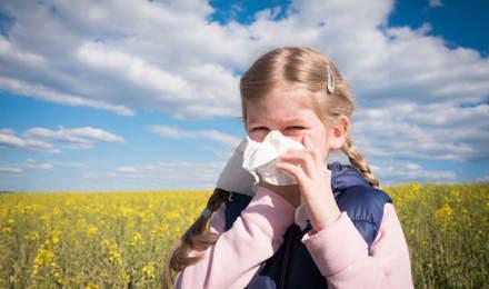 Nuori tyttö niistää nenäänsä pellolla ja saattaa kärsiä siitepölyallergian ja muiden allergioiden ristireaktiosta.